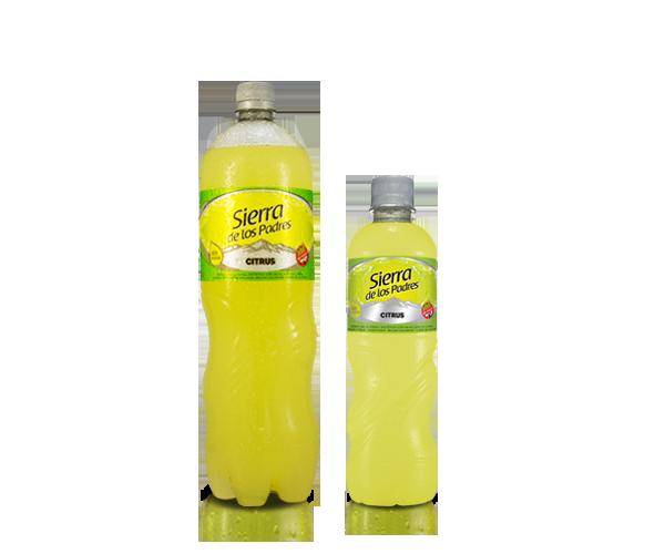 Gaseosa Línea Plata sabor Citrus